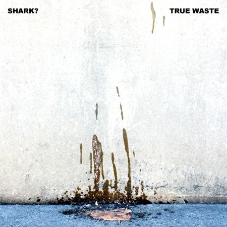 True Waste by Shark?