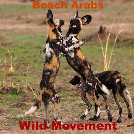 Wild Movement by Beach Arabs