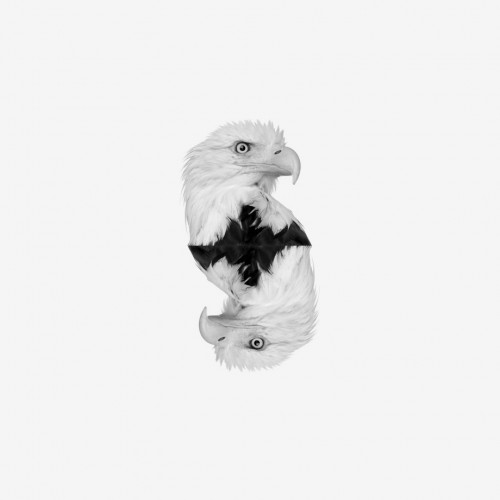 Alter Eagle by Sauna Heat