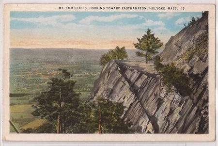 Kindling Mt Tom