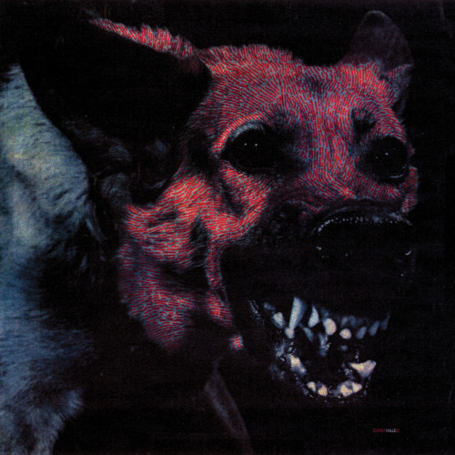 Under Color of Official Right by Protomartyr