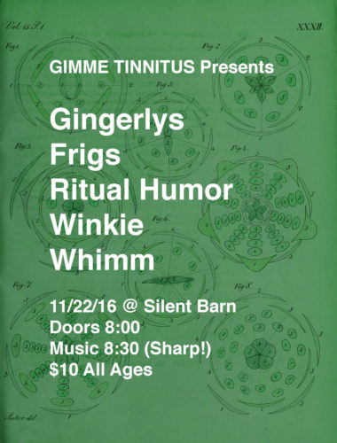 show :: 11/22/16 @ Silent Barn > Gingerlys ~ Frigs ~ Ritual Humor ~ Winkie ~ Whimm