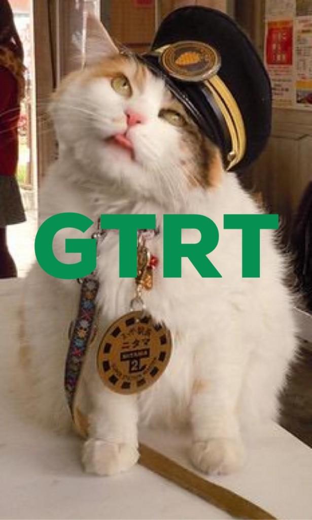 GTRT stationmaster cat