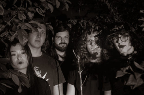 stream these :: Garden of the Ark + Ydinaseeton Pohjola + Full of Hell + Khiis + SHIT COFFINS + Elizabeth Colour Wheel + Marriage Material + Penance Stare + Novo Line + Veda Rays + Nonconnah + Matmos + Russian Baths